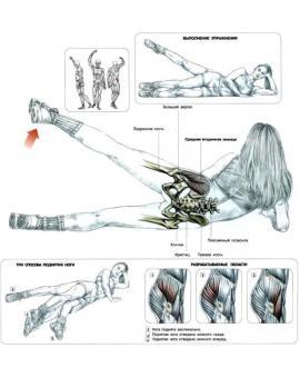 Упражнения на ноги, ягодицы и заднюю поверхность бедра при проблемах с коленями