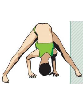 Наклон с широко расставленными ногами, или Прасарита Падоттанасана